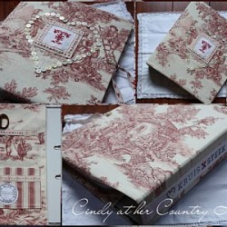 The perfect gift for a lover of Cross stitch!! Lovely Toile de Jouy fabric covered binder.