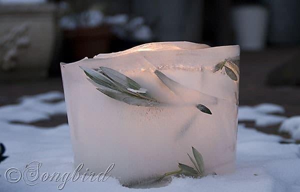 Songbird Ice Lantern 4