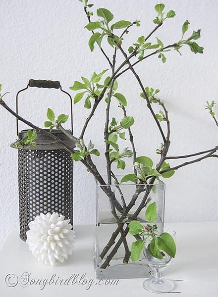 decorating with blossom branches in Spring via Songbirdblog