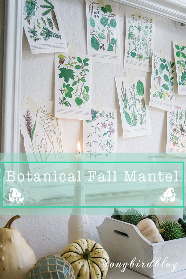 botanical Fall mantel decor with pumpkins, book pages and beach elements