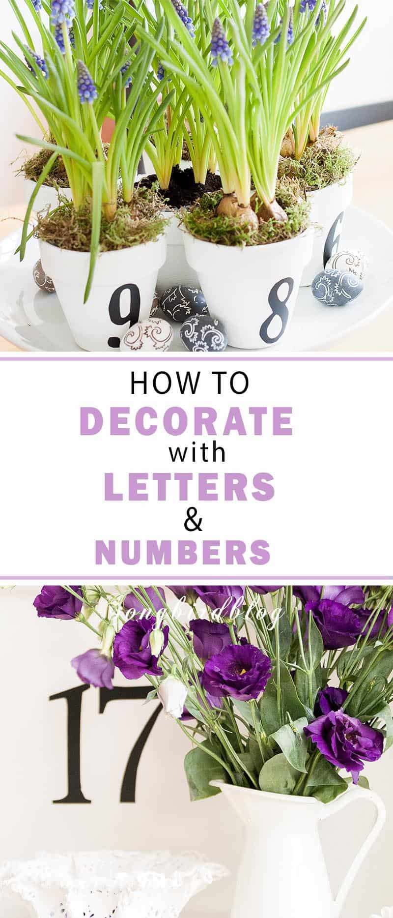collage image decorating with letters and numbers