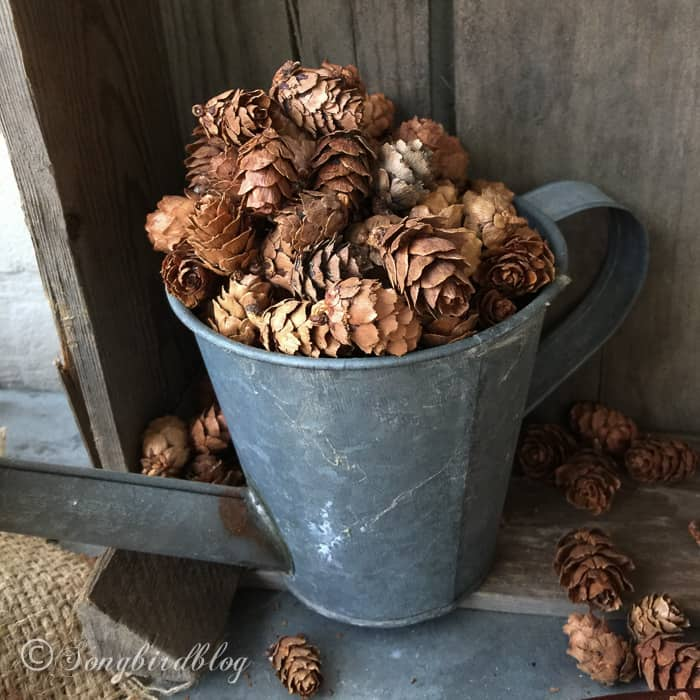 A small bucket overflowing with mini pine cones. Colors of Fall at Songbirdblog