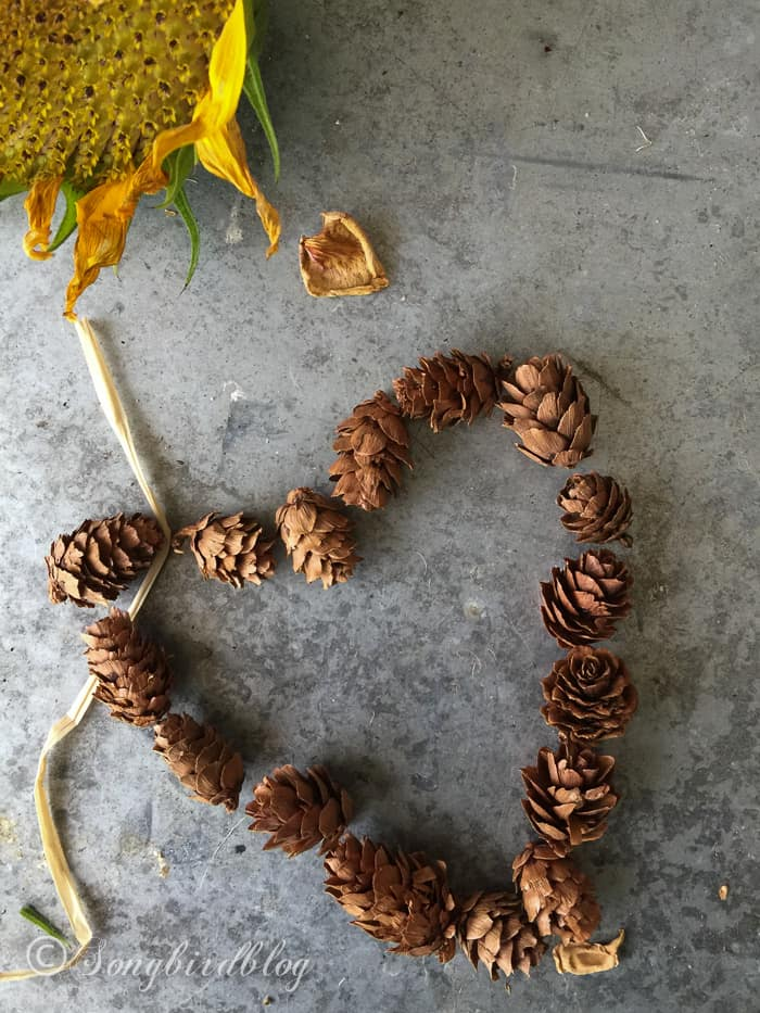 A mini pine cones heart. Colors of Fall at Songbirdblog