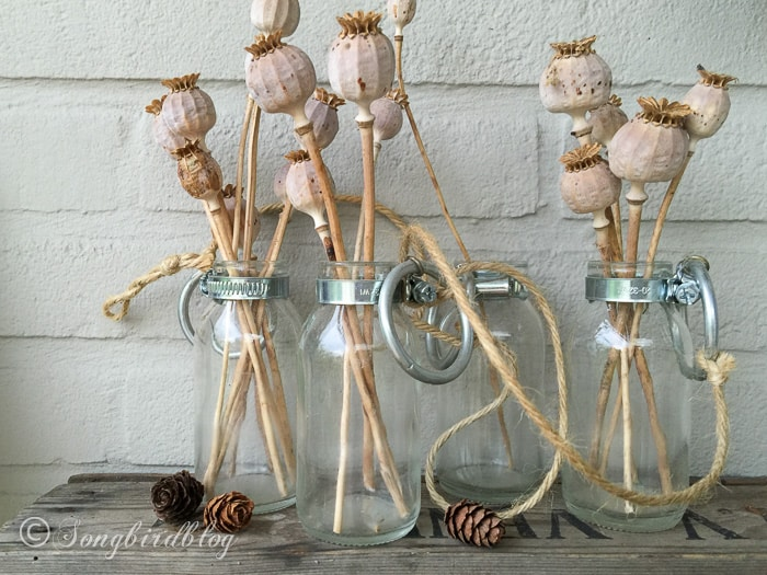 Poppy pods in glass bottles. Simply Fall at Songbirdblog