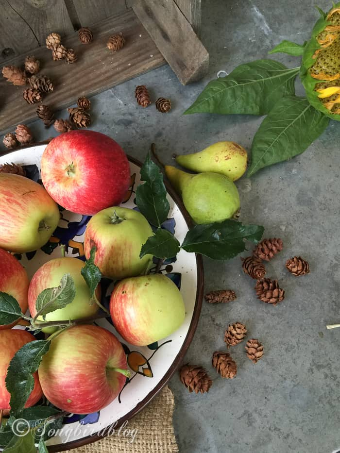 Apples, pinecones and flowers scattered on a table. Free fall decorating tips.