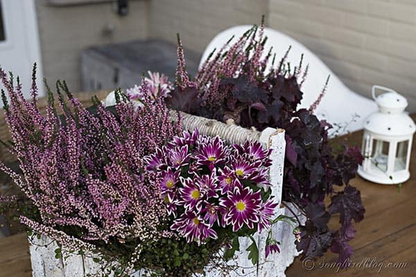 Fall garden table decoration with a centerpiece in an old toolbox that got a little makeover with painted bark.