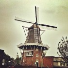 Holland-Wind mill.jpg