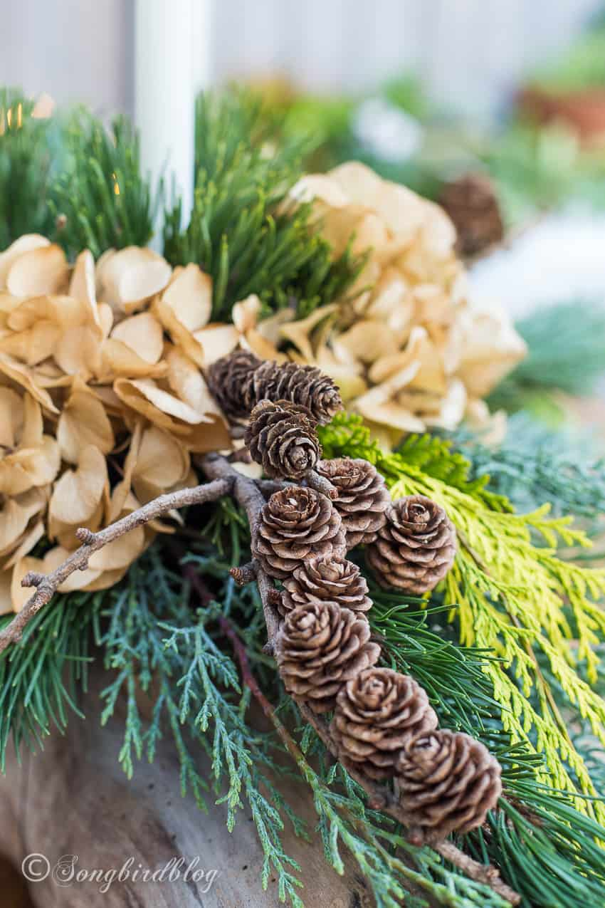 detail with tiny pinecones Christmas centerpiece