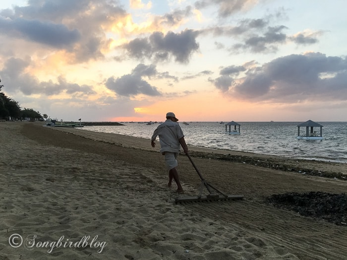 Holiday in Bali. Sanur beach, sunrise. Cleaning the beach