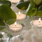 floating candles in an indoor pond with coral on the side