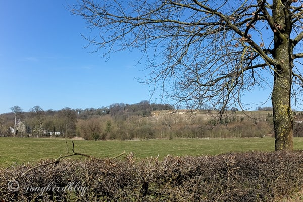 Limburg-Holland-landscape-early-Spring
