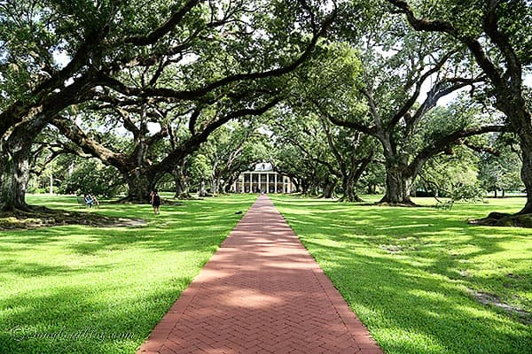 Oak Alley plantation Baton Rouge