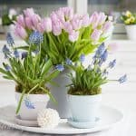 Spring Colors on Painted Pots