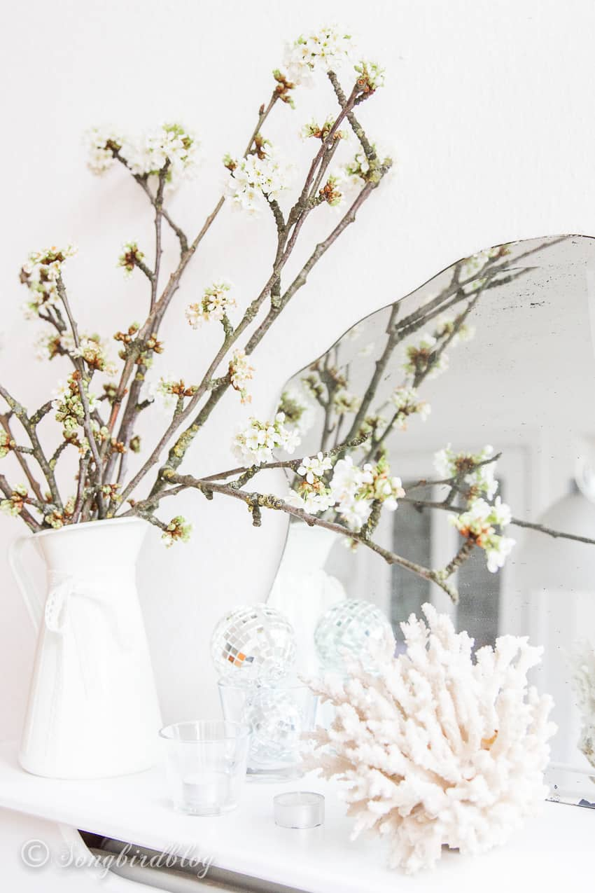 cherry blossoms in a white pitcher