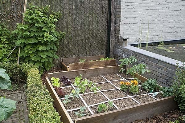 Lovely Square Foot Gardening Patch