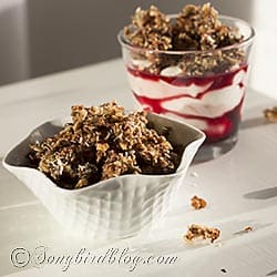 no grain low carb granola recipe via Songbirdblog (1)