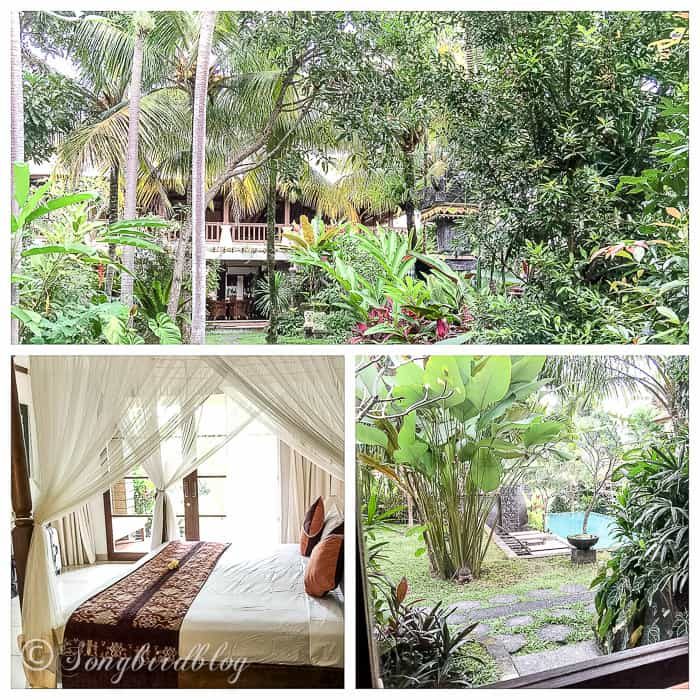 Holiday in Bali. Ubud village. Tropical resort