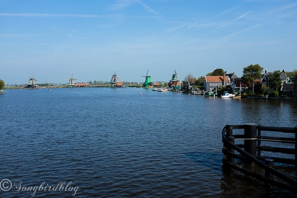 Visit Zaanse Schans Dutch traditional homes and windmills-3