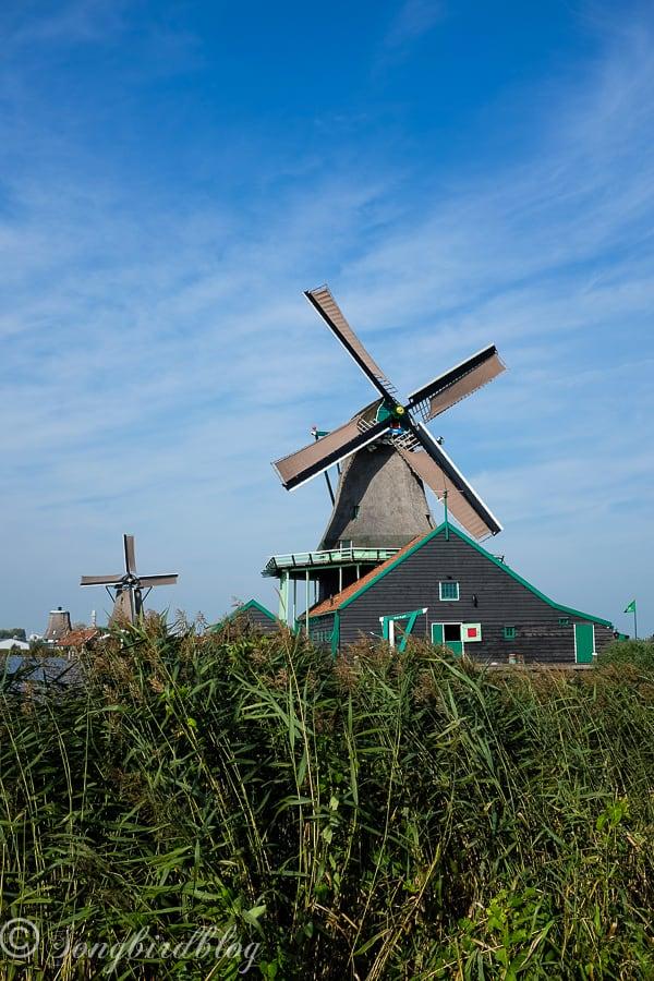 Visit Zaanse Schans Dutch traditional homes and windmills
