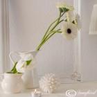 All white vignette
