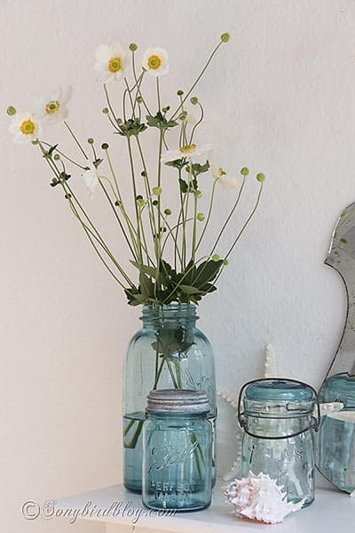 blue_mason_jars_flowers_decorating_ideas