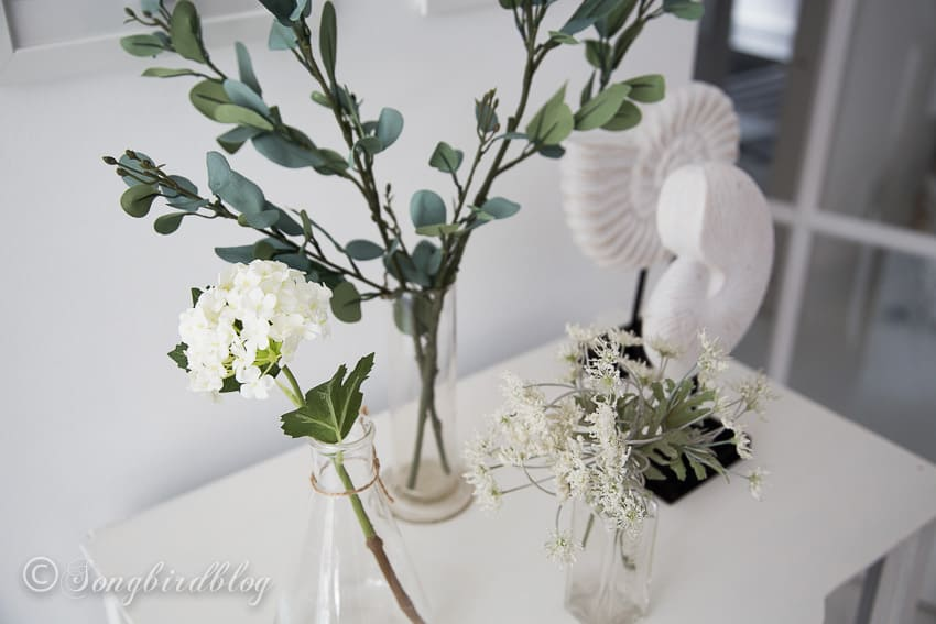botanical prints decor with faux greens and beach elements