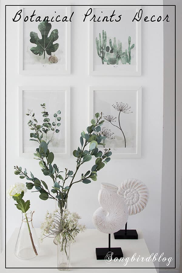 Botanical prints decor with a bit of a beach vibe. Botanical prints make great wall art. Add some faux greenery in vintage hand me down bottles and you have a pretty nature inspired decorative vignette.  It is simple, and yet so serene and beautiful. #botanical #flowers #summer #beach #vignette #easy #quick #decor #white living