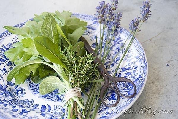 My Cooking Secret Reveiled Making A Bouquet Garni Songbird