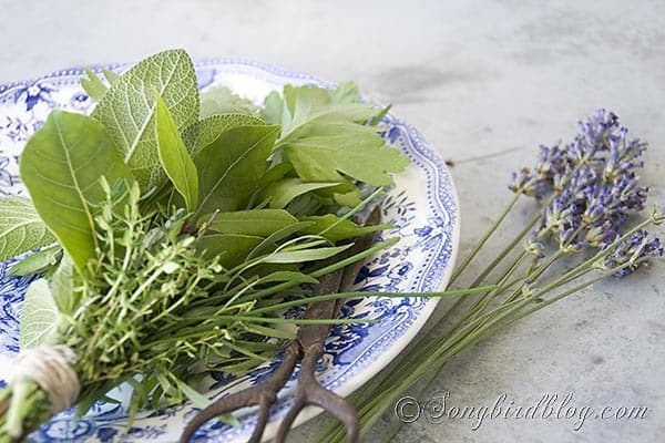 bouquet garni herbs cooking 3