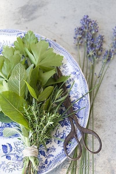 bouquet garni herbs cooking 4