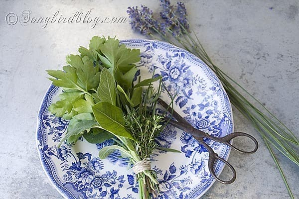 bouquet garni herbs cooking 5