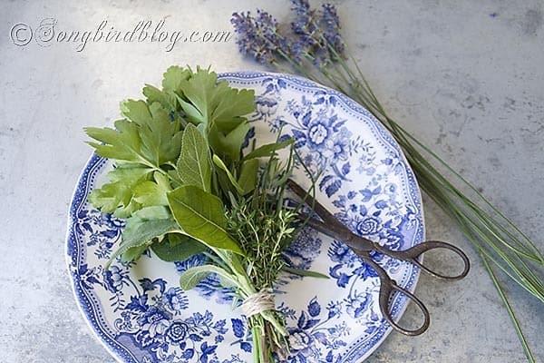 bouquet garni herbs cooking 5