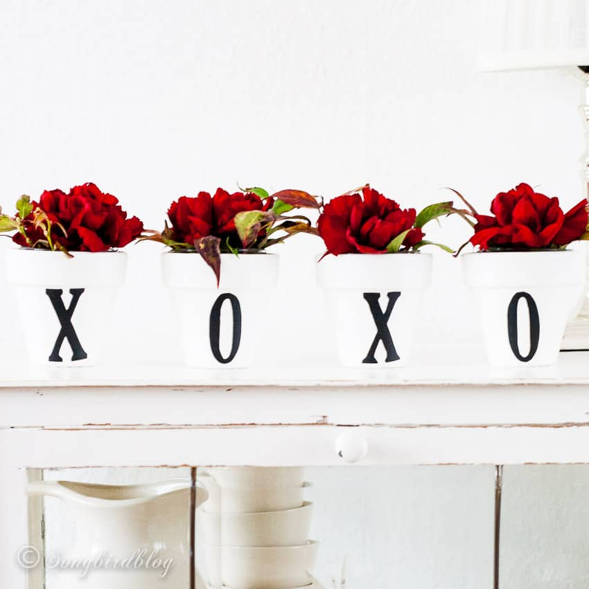 Line of containers with flowers spelling xoxo