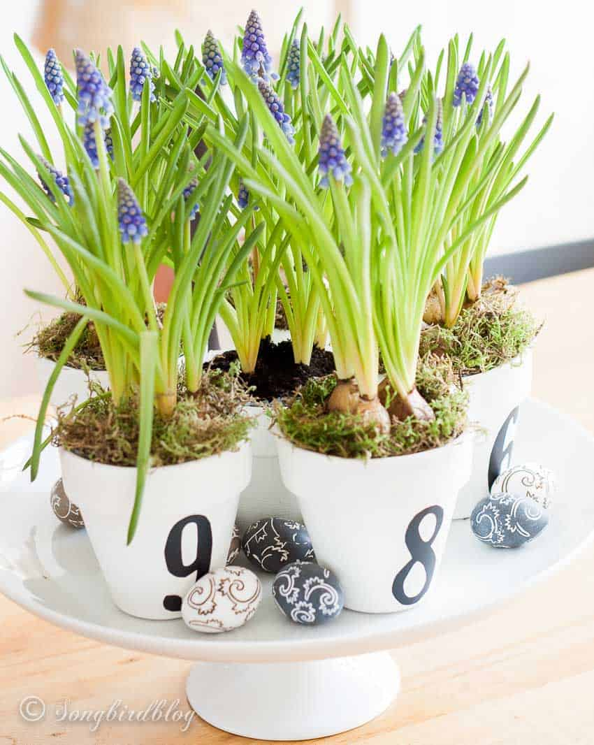 numbered pots easter decoration