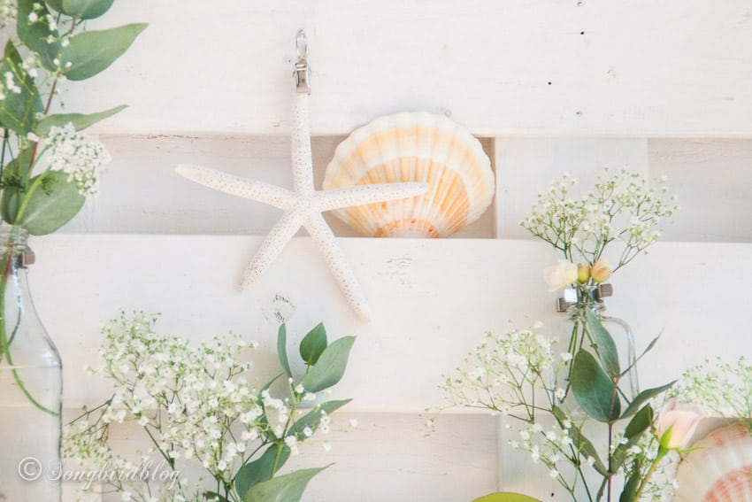Summer decoration with sea star, shells and flowers