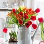 Decorating with tulips ~  in honor of national tulip day