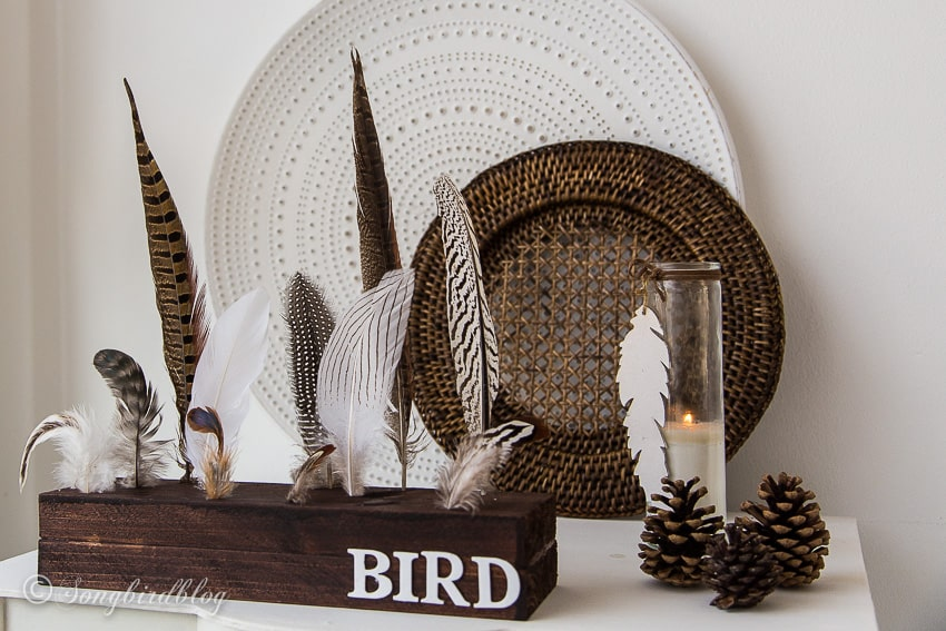 how to make a feather display