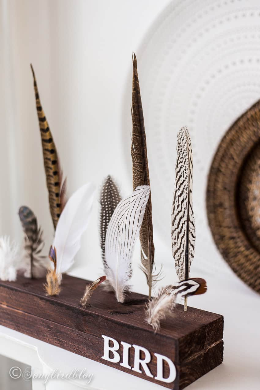 wood and feathers decoration