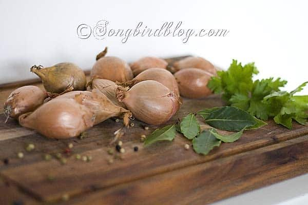 french onion soup recipe 1