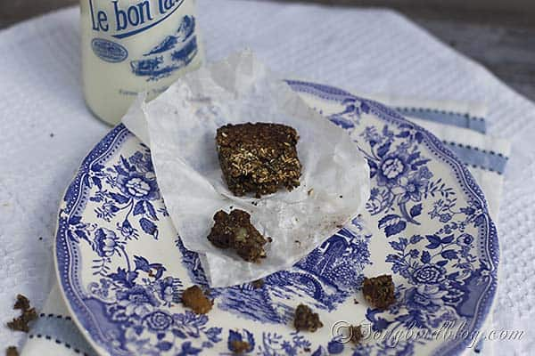 granola_seed_bar_recipe_gluten_free_paleo_healthy_tasty