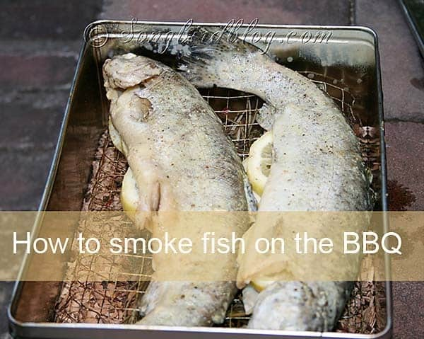 how to smoke fish on the bbq