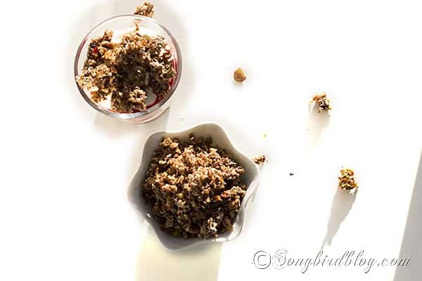 no grain low carb granola recipe via Songbirdblog 1