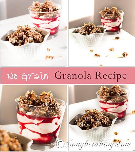 no grain low carb granola recipe via Songbirdblog