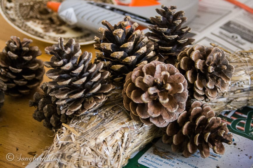 glueing pinecones to a straw wreath