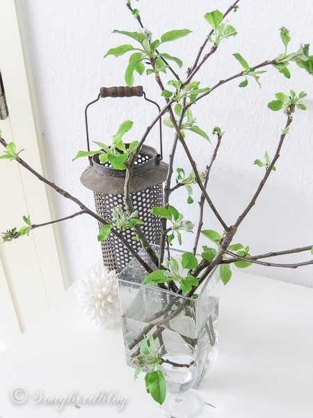 A little rustic apple blossom Spring decoration.
