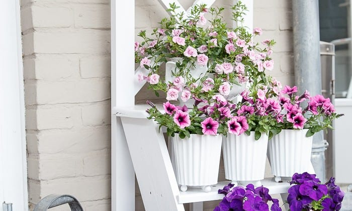 step ladder flower stand-12