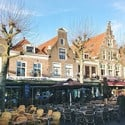 At the nest. About moving, waiting and a mini vacation in Haarlem