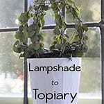 From Lampshade to Topiary