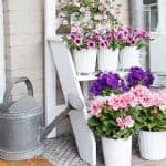 Ladder Flower Stand