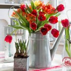thumb_red_tulips_Spring_decor